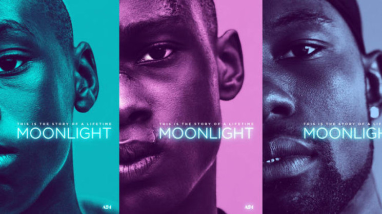 Moonlight paga anche l'immotivata indifferenza critica e delude al box office italiano